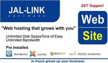 Web Hosting Profesional