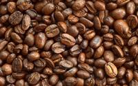 ARABICA COFFEE, ROBUSTA COFFE, ROASTED COFFEE BEANS, COCOA