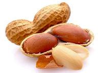 Raw Peanuts in Shell , Pakistani Peanuts Exporter