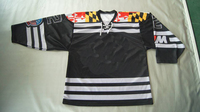 Adult Embroidered Custom Name/Number Ice Hockey Jersey