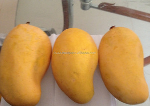 Pakistani Sindhri Mango, Pakistani Sindhri Mango Suppliers