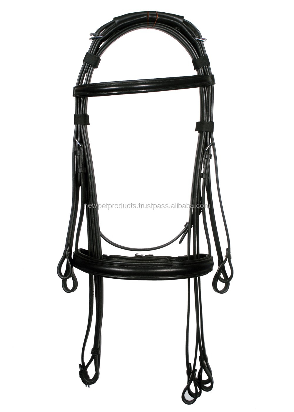 Leather Bridle Jumping