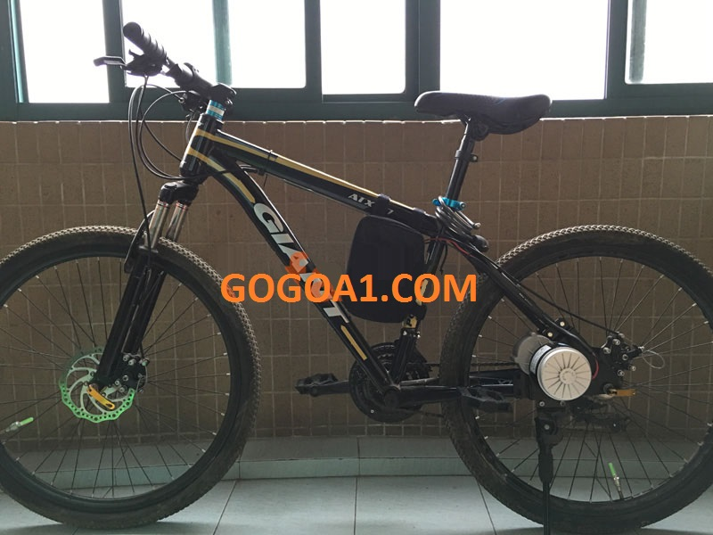 GoGo A1 DIY E-bike conversion