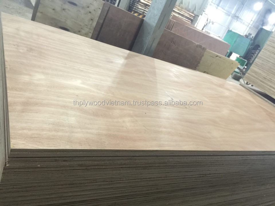 cheap price good quality packing plywood sheet, okoume birch bintangor plywood