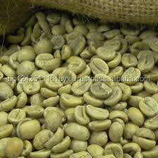 Arabica And Robusta Green Coffee Beans Extract Chlorogenic