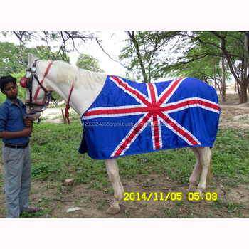 Horse Show Rugs View Joya Product Details From International On Alibaba Com
