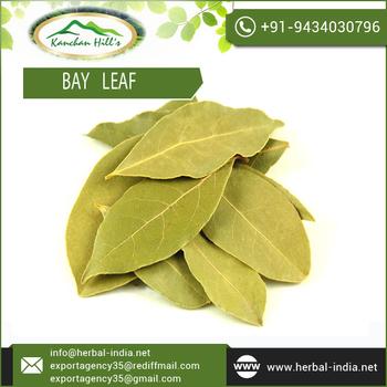 Get-Best-Bargain-Rate-on-Bay-Leaf.jpg_350x350.jpg
