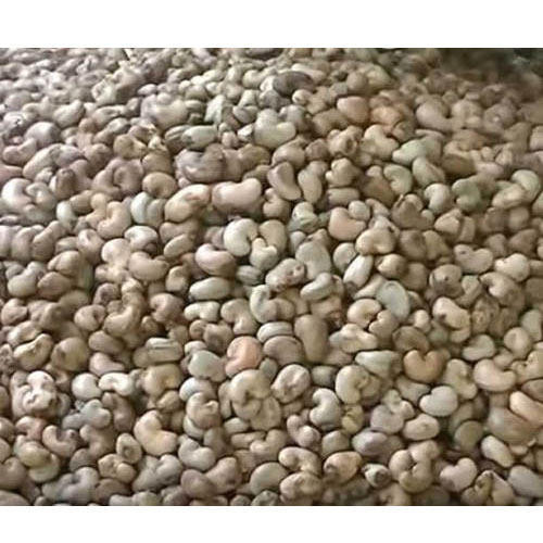 Raw Cashew Nuts, Peanuts, Hazelnuts , Pistachios For Bulk Export
