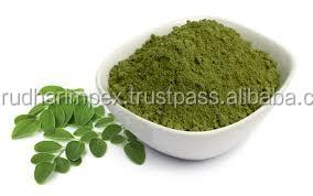 Spray Dried Moringa Oleifera Powder