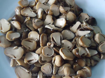 Canned straw mushroom whole with high quality / canned gherkins/vegetables