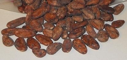 Cocoa Beans,alkalized cocoa powder,cocoa powder,...