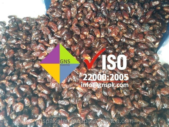 HACCP ISO KOSHER CERTIFIED Aseel and BJ Dates - GMO FREE Dates