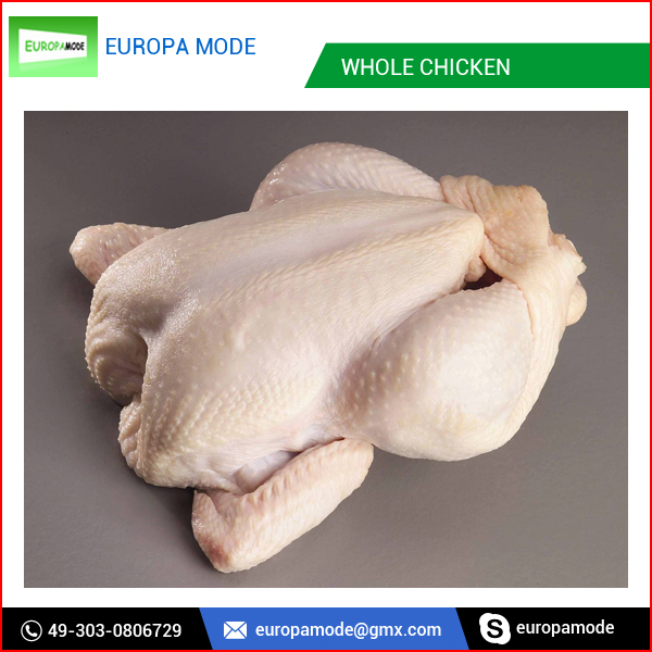 Halal Grade A Frozen Whole Chicken and Frozen Chicken Feet