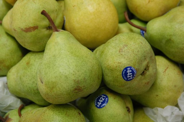 Fresh Packham Pear From Europe