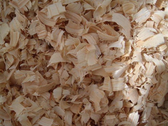 Wood Shavings - Buy Shaving,Wood Shaving,Biomass Product on Alibaba com