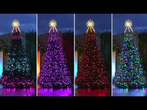 RGB Animated Majestic Mountain Pine Commercial Christmas Tree