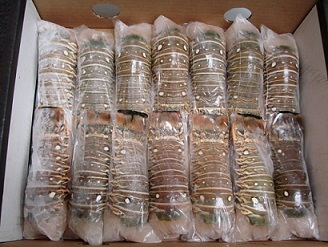 Top Quality Fresh Seafood Frozen Lobster - Buy Frozen Lobster Product on Alibaba.com