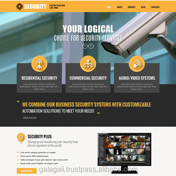 Hot Sale for Quality Portal Wordpress Website Design and Development for Security - www.theme4biz.com