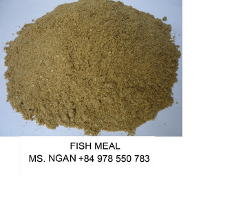 Fish meal grade a fish meal for animal feed cheap price for Fish meal for sale