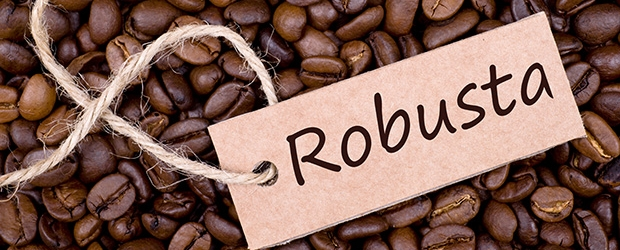 Organic Robusta Roasted Green Coffee Beans Cheap Price(grade A ...
