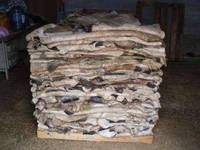 Sell Wet Salted Cow Skin Dry Raw Cow Hides