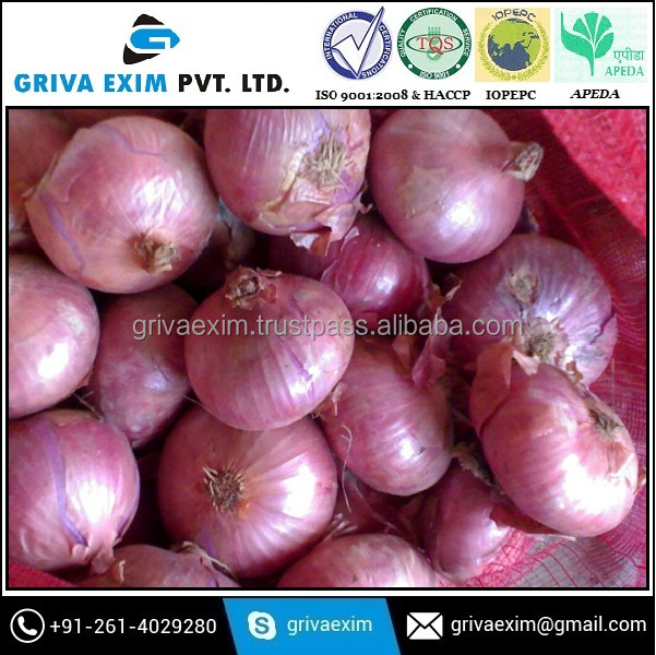 lowest price fresh red onion