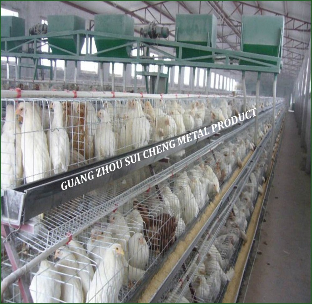Guangzhou Factory Meat Broiler Chicken Cages For Sale