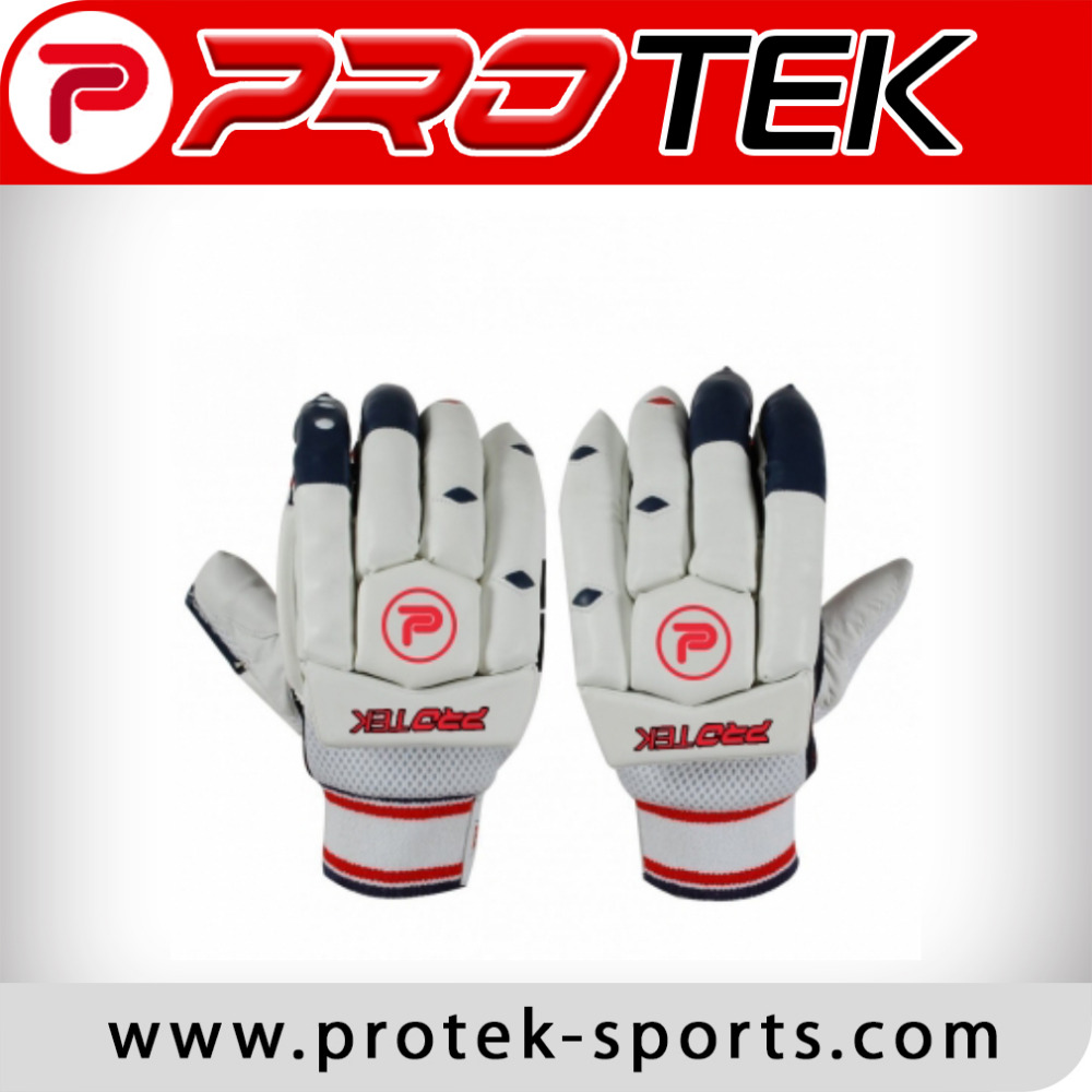 AS Cricket Batting Gloves Protek