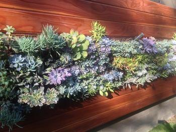 Vertical Garden Artificial Plants Frame