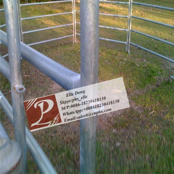 Galvanized Steel Ingot Distributor Belarus: Hot Sale Factory Price Galvanized Farm Gates