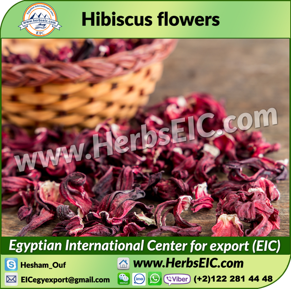 Exporter And Manufacturer Of Dried Hibiscus Flowers For Bulk