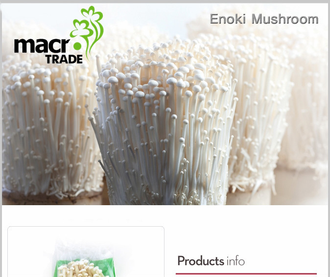 Enoki Mushroom Buy Mushroom Product On Alibaba Com