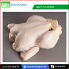 Whole Frozen Chicken Fresh and Halal