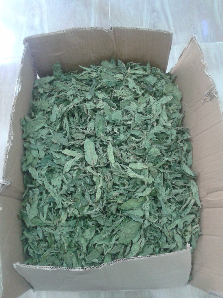Molokhia dry leaves dried vegetable molokhia leaves dried ISO 22000 factory certified EGYPT