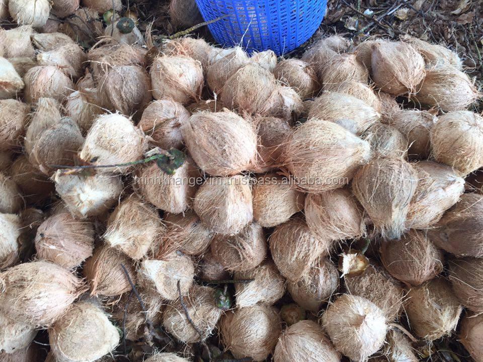 Semi Husked Coconut /full Husked Coconut - Skype :timuoi88