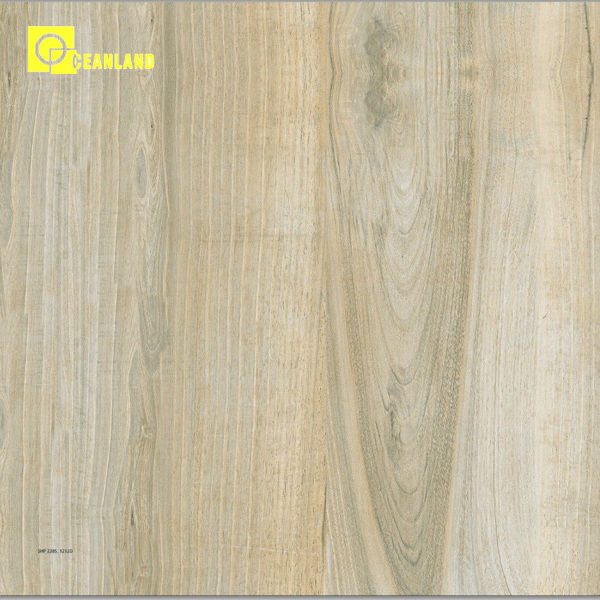 Chinese Foshan Living Room Interior Wood Floor Tiles Price In Sri