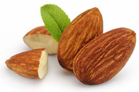 High Quality Organic Raw Almonds Almonds nuts and Kernel / Peanuts