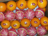 yellowfarm Fresh Egyptian Oranges and Lemons