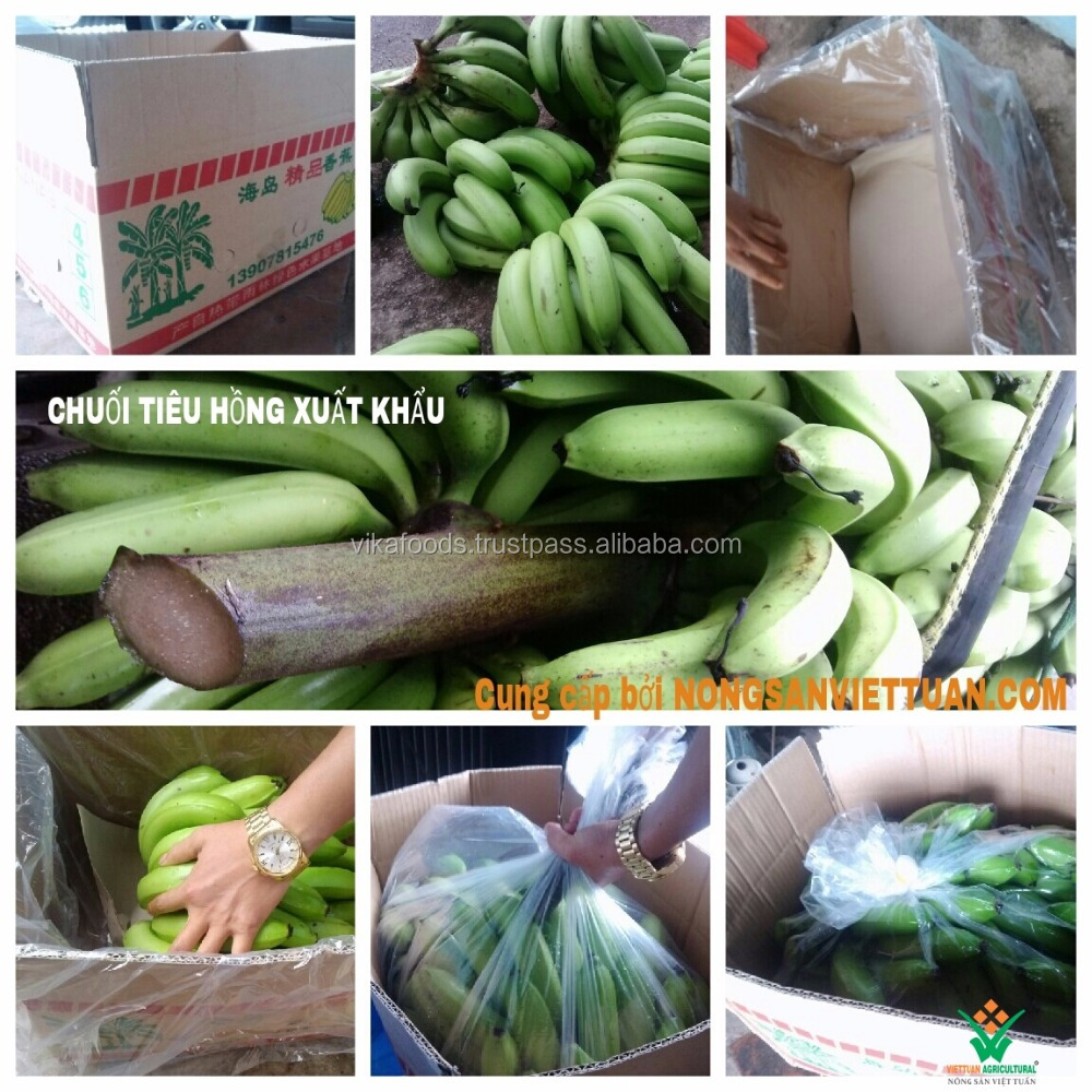 FRESH / DRIED BANANA WITH HIGH QUALITY AND WITHOUT PESTICIDES