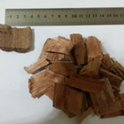 Acacia wood chips for paper industry