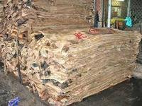 Raw Wet Salted Cattle Hides | Cow Skins /Buffalo hides for sale