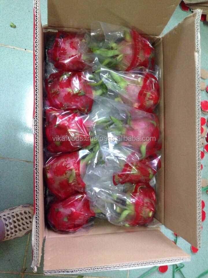 FRESH DRAGON FRUIT EXPORT STANDARD PRICE FOR SALE HIGH QUALITY WITH BEST PRICE (+84 983 028 718).
