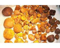 100% Whole and Broken Ox Bezoar/ Gallstones