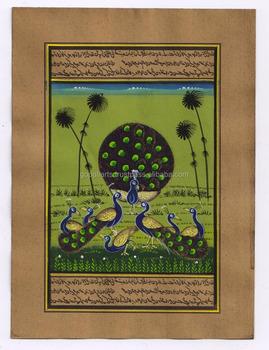 Hint Minyatür Tavuskuşu Boyama Su Renk Kağıt Boyama Vahşi Yaşam