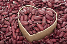 2016 Crop Kidney Beans Dark Red long red wholesale kidney beans/Beans Kidney Price
