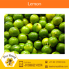 Organically Grown Fresh Lime/Lemon Available for Sale