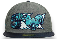 Snapback hat Fashion Custom Sublimated Cap/Online Get Cheap Sublimation Caps