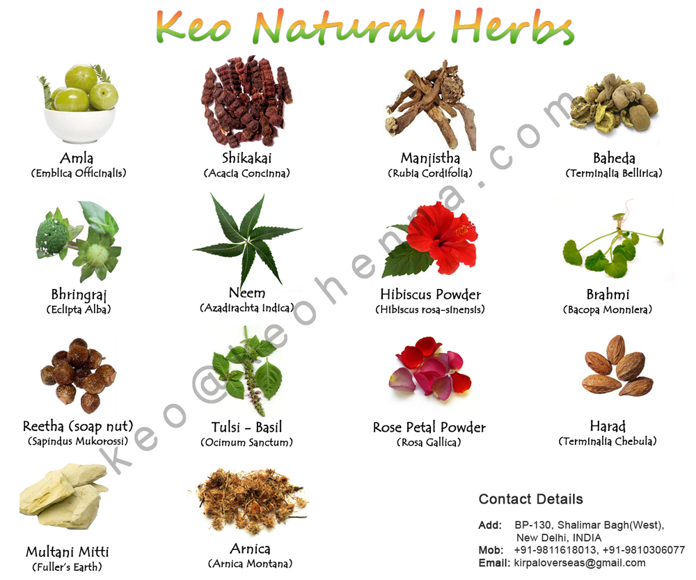 Extractos de hierbas india hierbas medicinales extracto for Tipos de hierbas medicinales