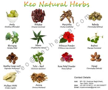 Herbal extracts indian medicinal herbs buy herbal for Planta decorativa con propiedades medicinales crucigrama