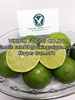 Fresh/Frozen Seedless Lemon Lime